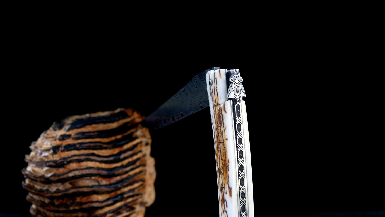 Original laguiole - Taschenmesser Laguiole en Aubrac, Pierre Martin, MIKE 3, Damast, Mammutstoßzahn, Plein, guilochierte Biene